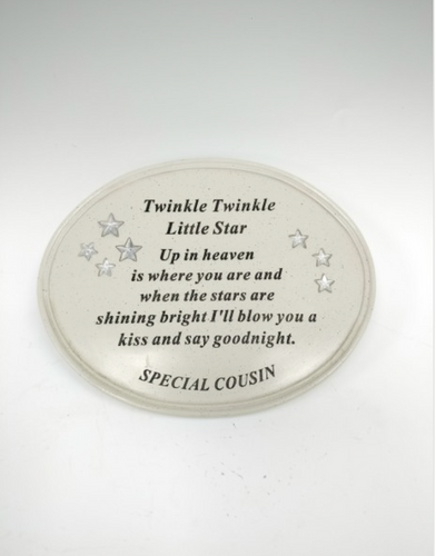 'Twinkle Little Star' Outdoor Memorial Plaque - Special Cousin