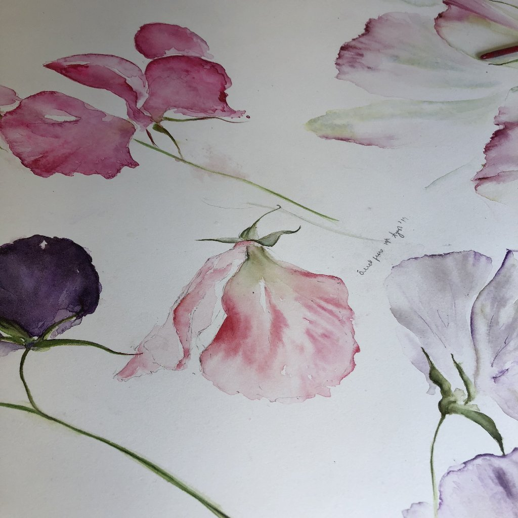 Watercolour Course Painting Seasonal Flowers, LECROPT KIRK HALL, BRIDGE OF ALLAN 1st June - 22nd June 2020
