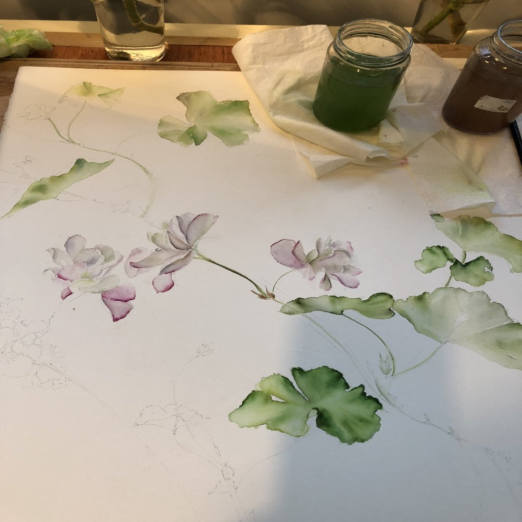 Watercolour Course Painting Seasonal Flowers, LECROPT KIRK HALL, BRIDGE OF ALLAN 23rd November - 14th December 2020