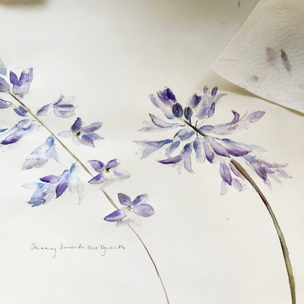 Watercolour Course Painting Seasonal Flowers, Lecropt Kirk Hall, Bridge of Allan 3rd June - 17th June 2019