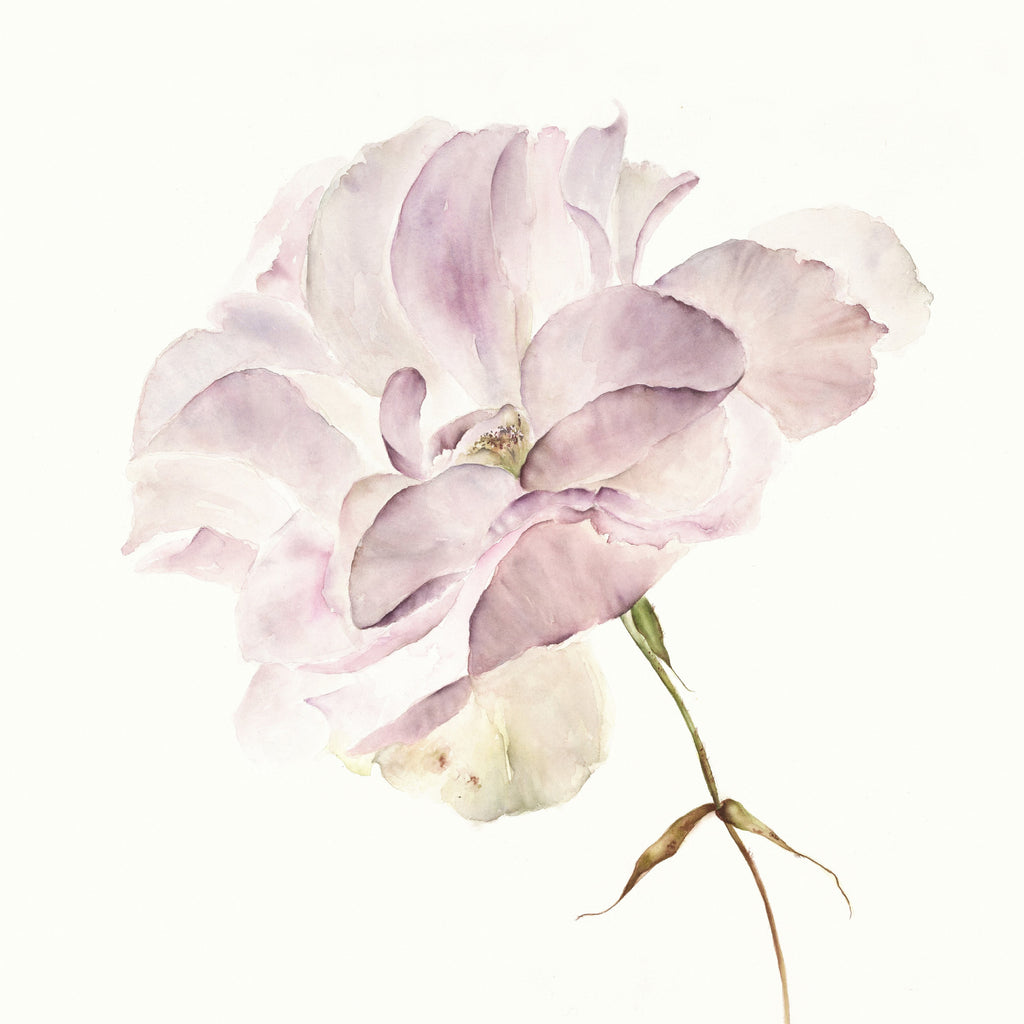 DAYLESFORD FARM  - WATERCOLOUR WORKSHOP (VIRTUAL EVENT)