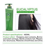 Blue Eucalyptus Leaves Anti-dandruff Straightening Hair Repair Purifying Shampoo