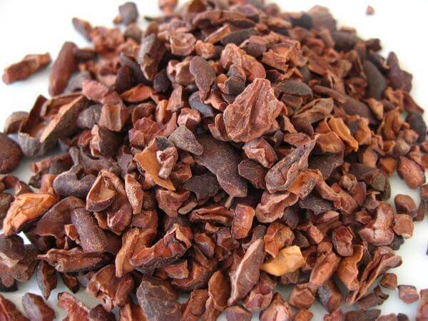 dried cacao beans cacao nibs close up view