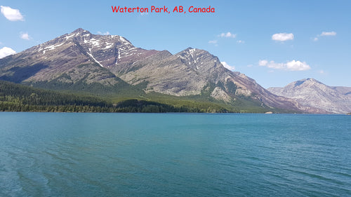 3 Waterton Park stickers for phone, tablet, laptop