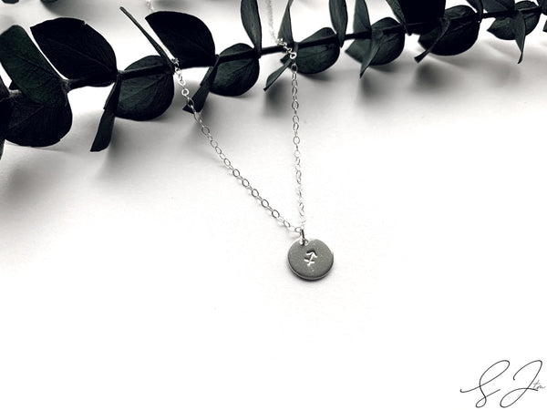 The Horoscope Disc Necklace