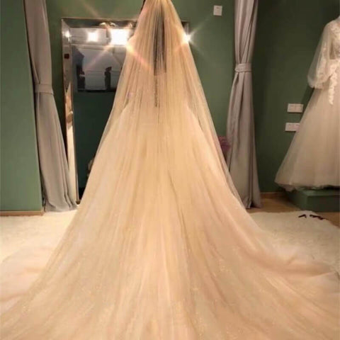 Luxurious sparkling wedding veil