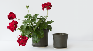 Stoneware Planters, Charcoal