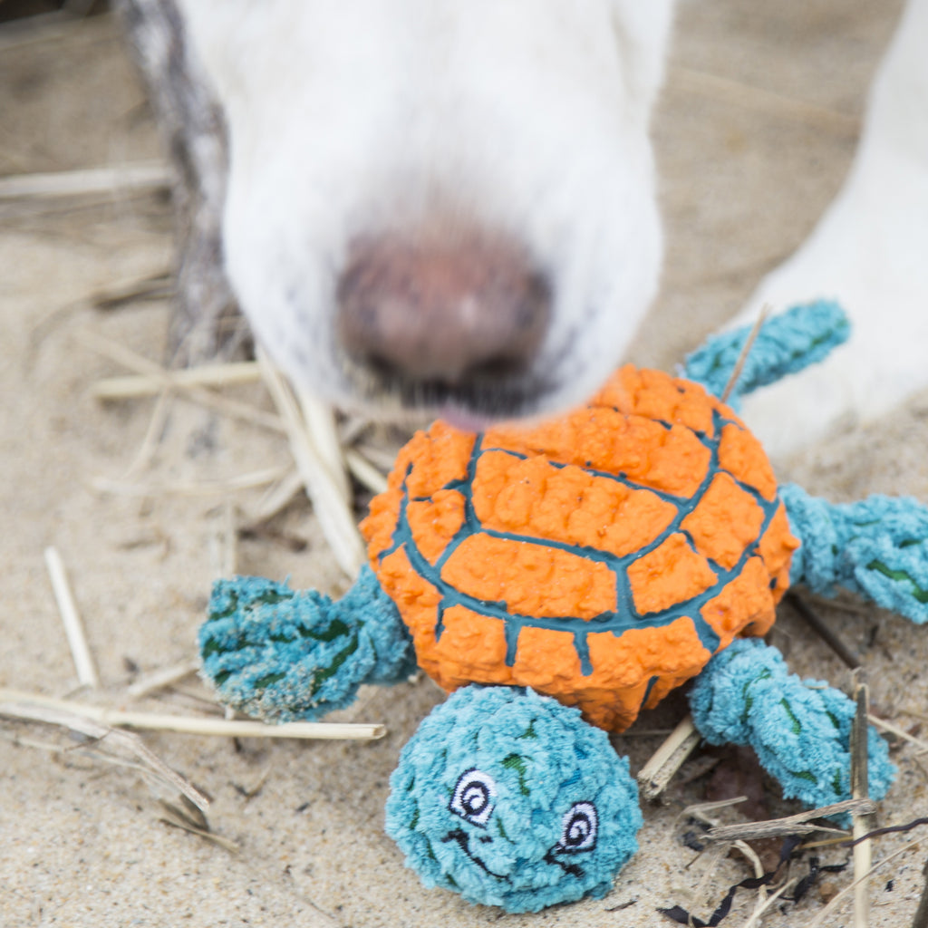 Ruff-Tex® Plush Combo - Dude the Turtle