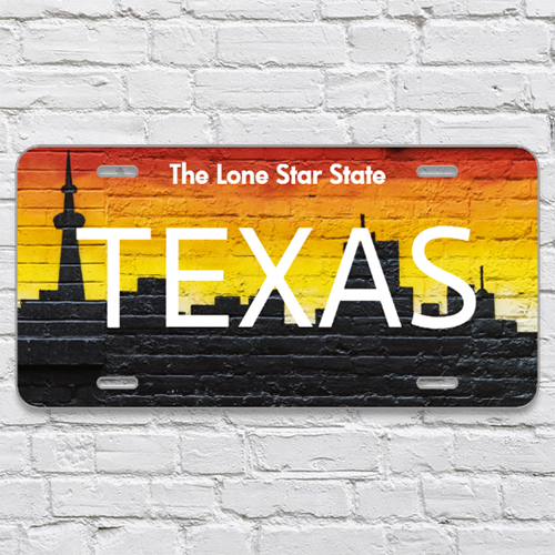 STATE NAME License Plate - 6x12 - Design 1