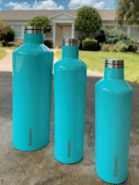 Corkcicle Classic Canteen- 25oz Glossy