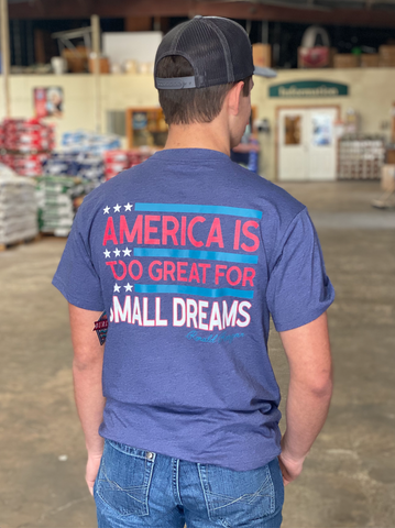 America Is Great Men's Graphic Tee