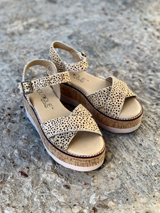 Brown Speckled Platforms