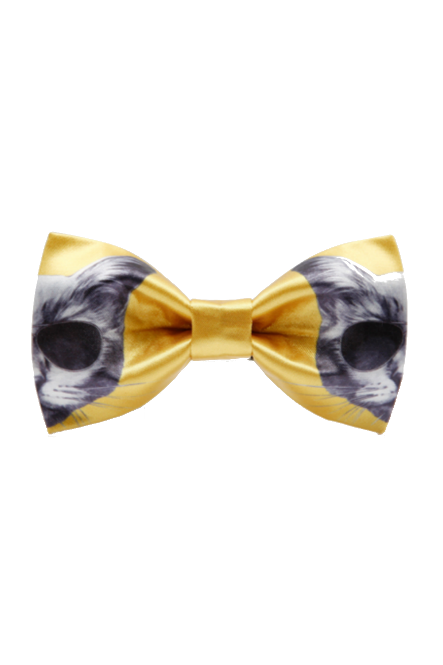 Glasses Kitten Cat Bow Tie