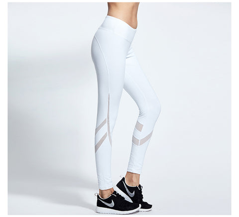 Mesh Yoga Pants Leggings