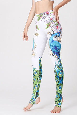 Peacock Barre Stirrup Leggings