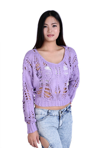 Crochet Long Sleeve Crop Top In Lilac