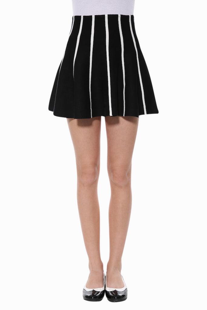 Vertical Stripe Skater Skirt In Black