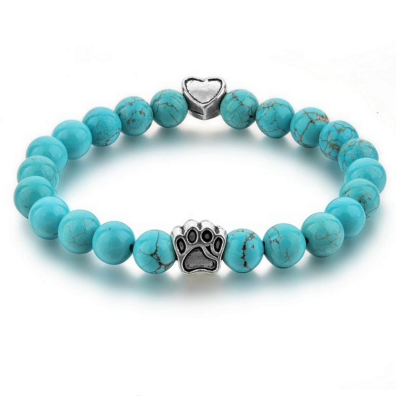 Tuquoise paw pet protection charm bracelet