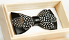 Dot Feather Bow Tie