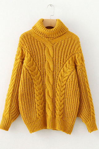 Turtleneck Cable Knitwear
