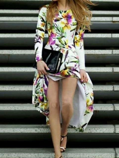 Fashion Print Round neck Long sleeve Skater Maxi Dresses