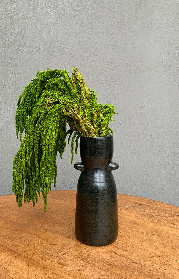 Amaranthus Caudatus Bunch - Green