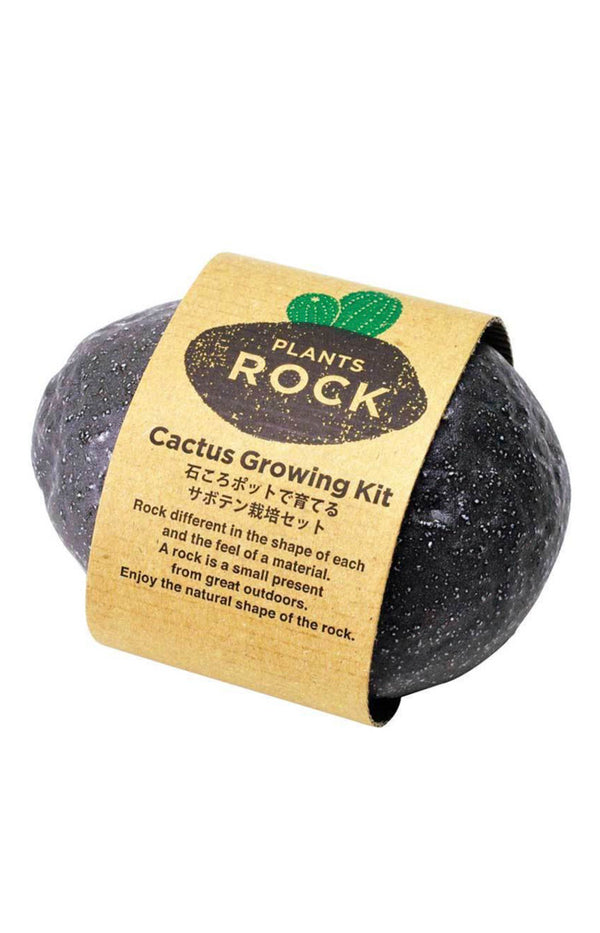 Plants Rock - Cactus