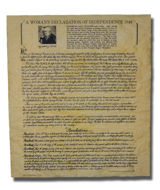 Declaration of Sentiments Poster