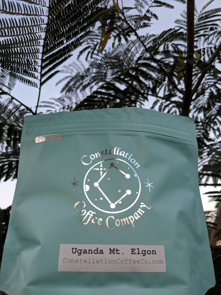 Constellation Coffee Company - Uganda Mt. Elgon (Large)
