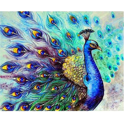 Beautiful Peacock - DIY Painting By Numbers Kit