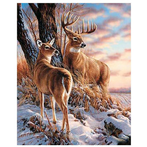 Two Handsome Deers - DIY Painting By Numbers Kits