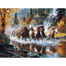 Horses in the Water - DIY Painting By Numbers Kits