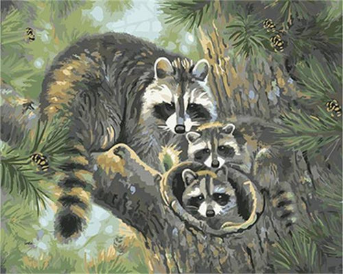 Raccoon Family - DIY Painting By Numbers Kit