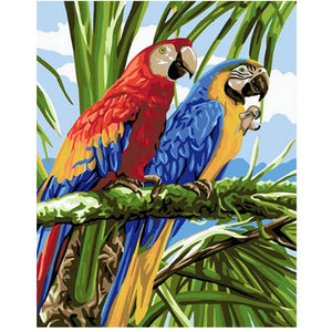 Parrot Couple - DIY Painting By Numbers Kits