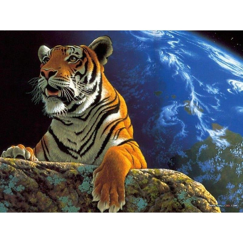 Beautiful Tiger - DIY Painting By Numbers Kits