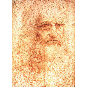 Portrait Of A Man In Red Chalk  - Leonardo Da Vinci DIY Painting By Numbers Kit