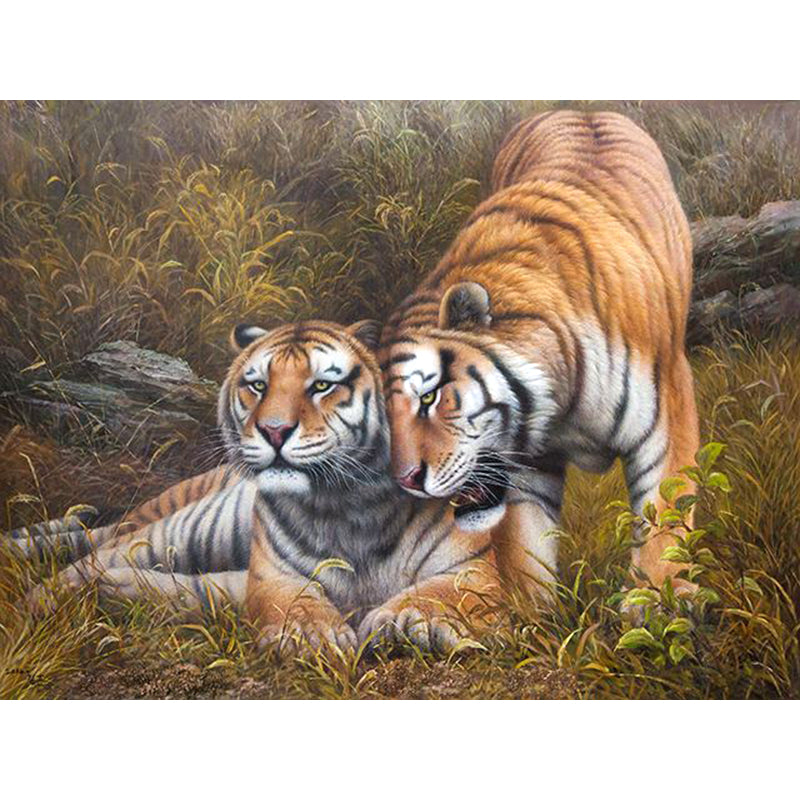 Couple of Tigers - DIY Painting By Numbers Kits
