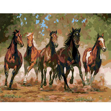 Horse Racing - DIY Painting By Numbers Kits