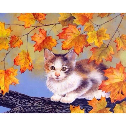 Adorable Kitten - DIY Painting By Numbers Kits