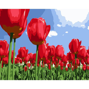Tulip Garden - DIY Painting By Numbers Kit