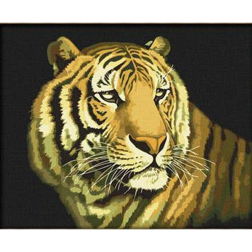 Pulchritudinous Tiger - DIY Painting By Numbers Kit