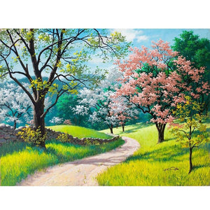 Spring Valley - DIY Painting By Numbers Kits