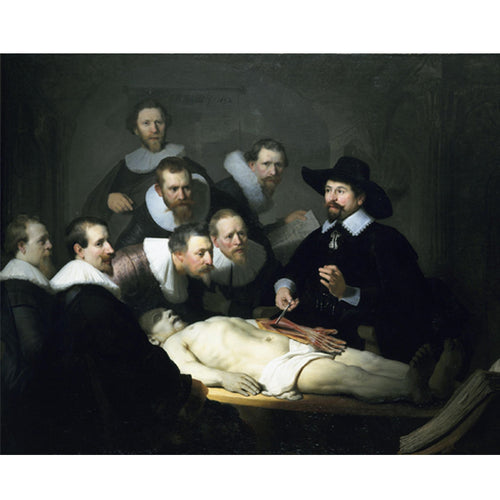 The Anatomy Lesson of Dr. Nicolaes Tulp - Rembrandt DIY Painting By Numbers Kit