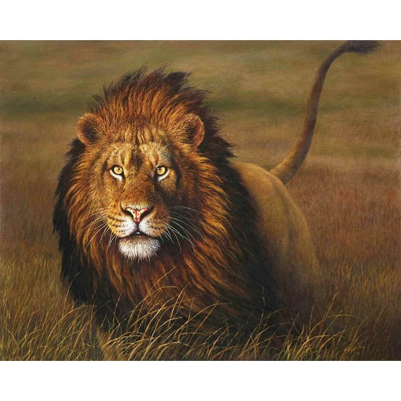 King of the Jungle - DIY Painting By Numbers Kits