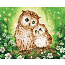 Owls on a Tree - DIY Painting By Numbers Kits
