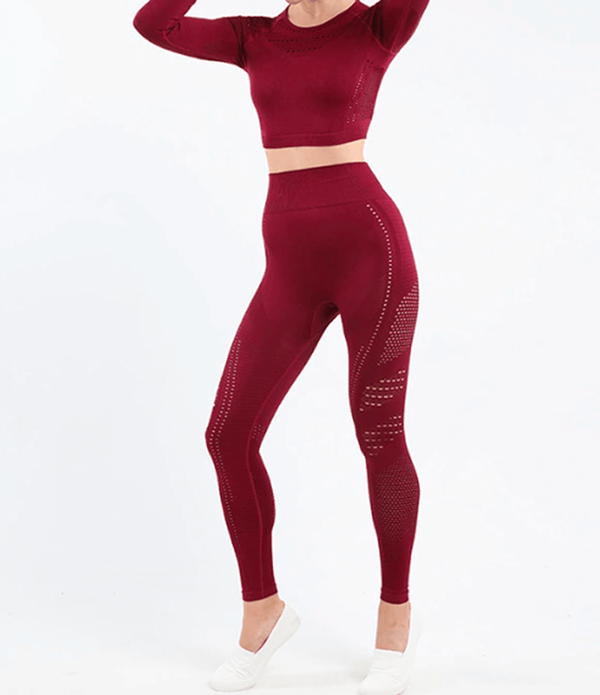 Leonora - Mesh Leggings (Wine)