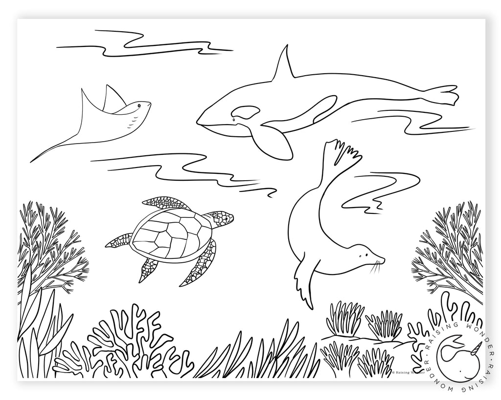 Single Coloring Page-Sea Animals