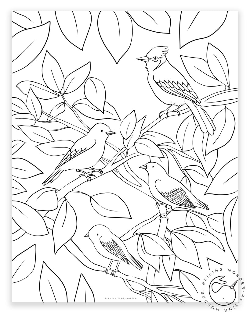 Single Coloring Page-Birds in Trees