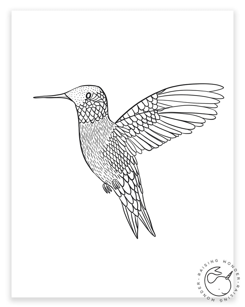 Single Coloring Page-Hummingbird