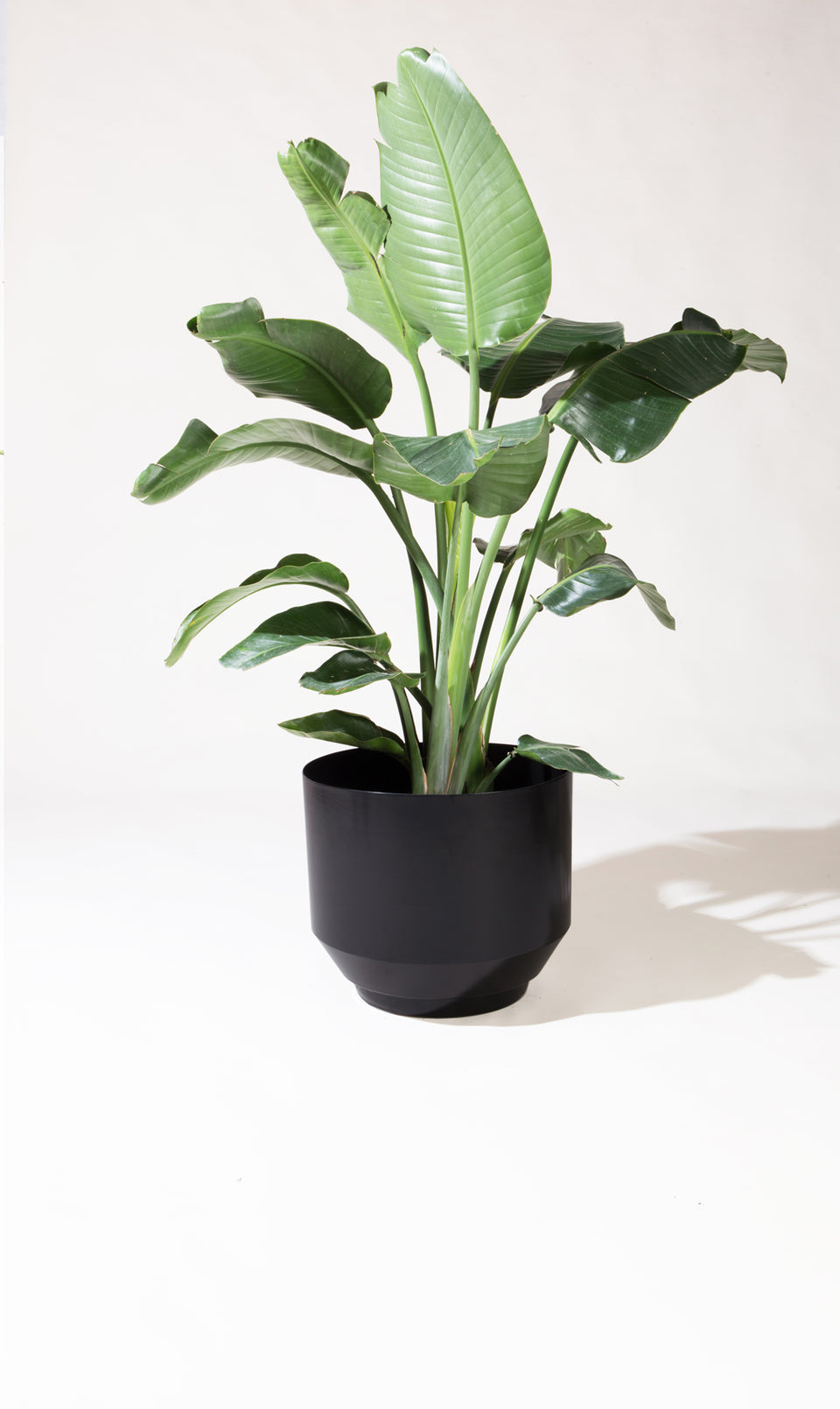 "16"" Spun Planter - Black"